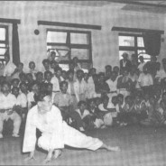 The Moo Duk Kwan® School